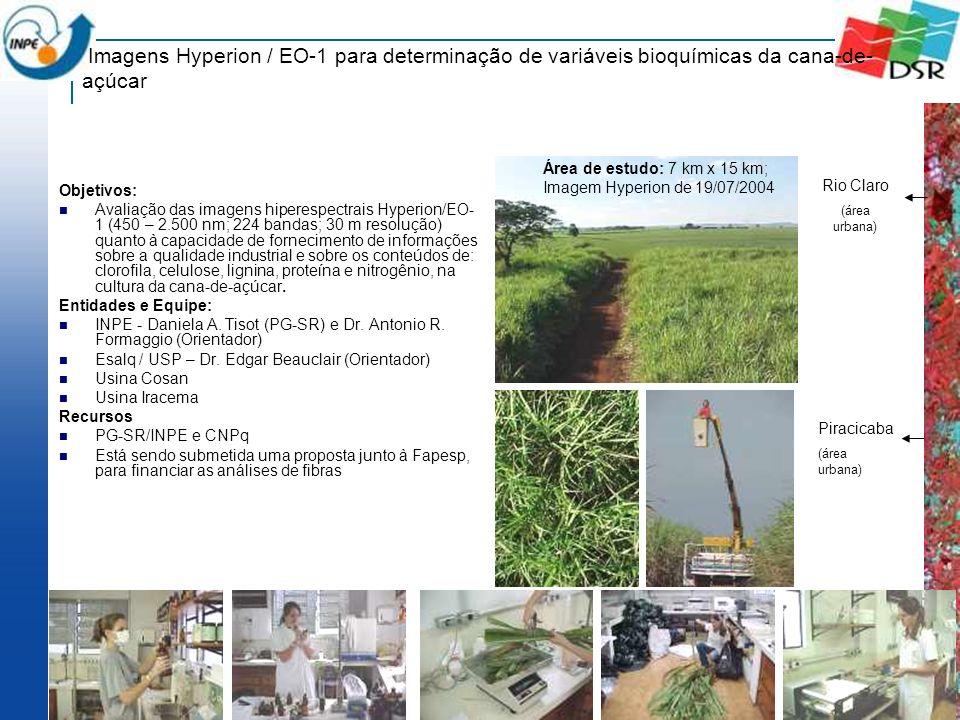 Imagens Hyperion / EO-1 para determinação de variáveis bioquímicas da cana-de-açúcar