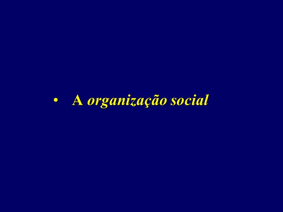 A organização social