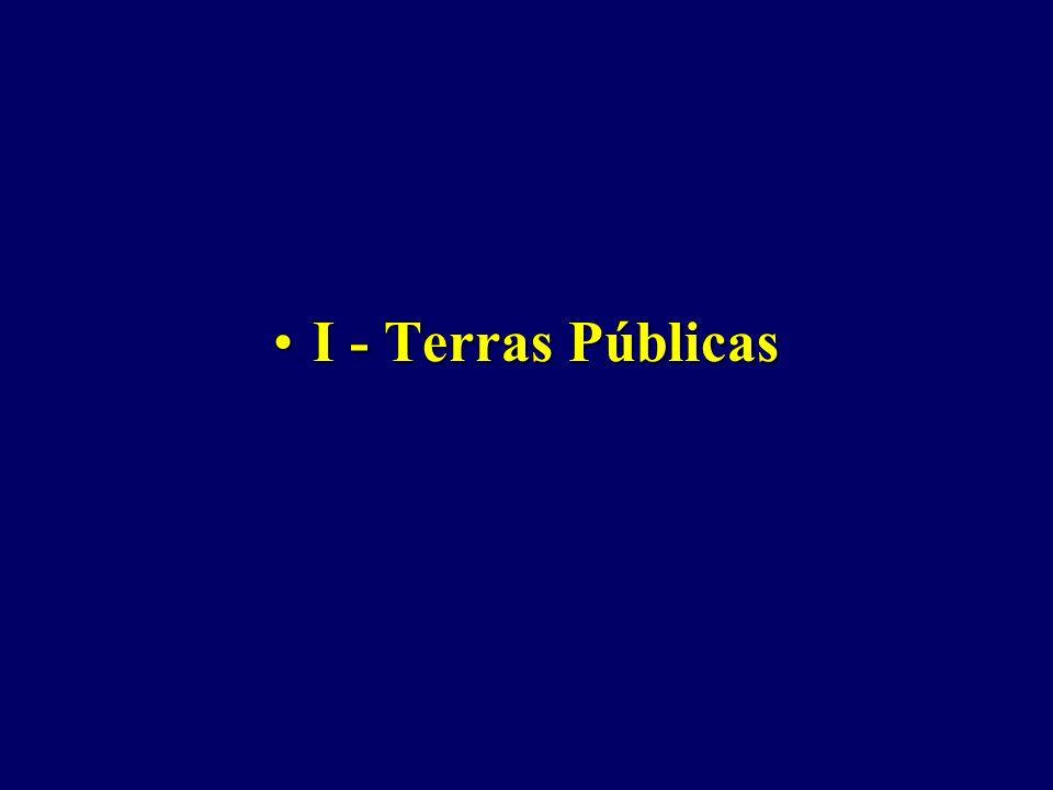 I - Terras Públicas