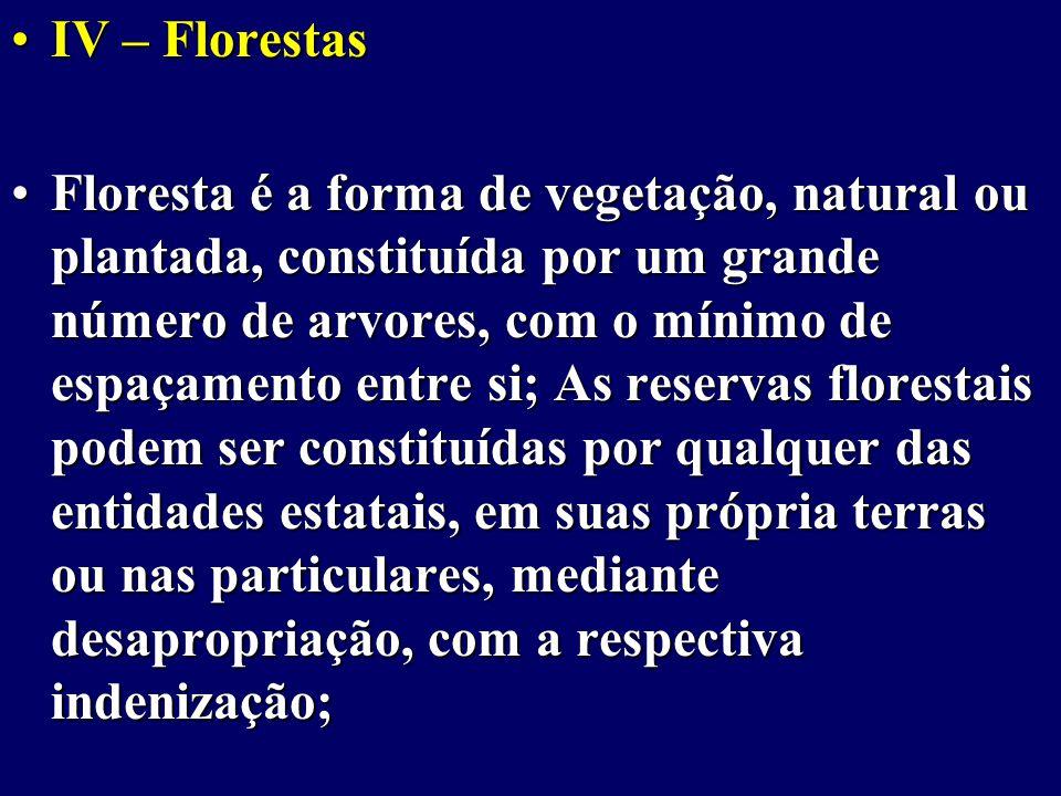 IV – Florestas