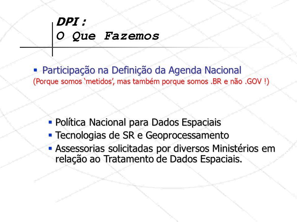DPI : O Que Fazemos Participação na Definição da Agenda Nacional
