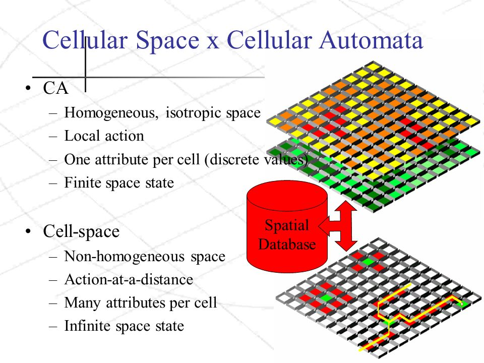 Cellular Space x Cellular Automata