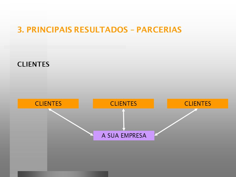 3. PRINCIPAIS RESULTADOS – PARCERIAS
