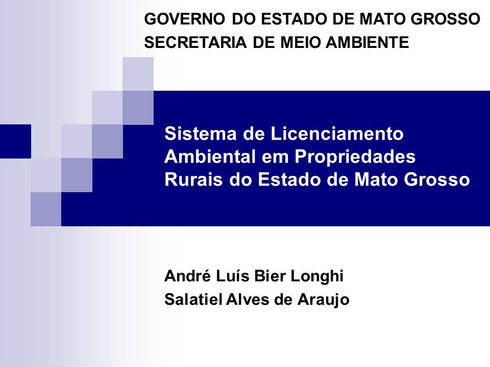 André Luís Bier Longhi Salatiel Alves de Araujo