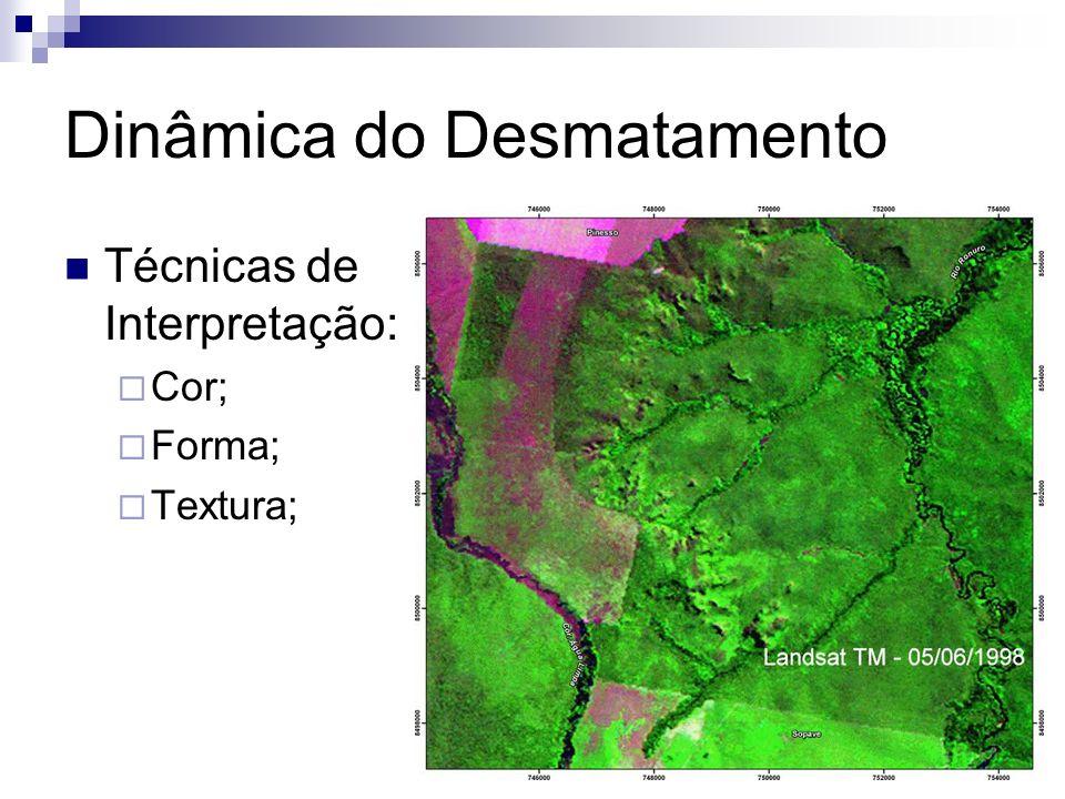 Dinâmica do Desmatamento