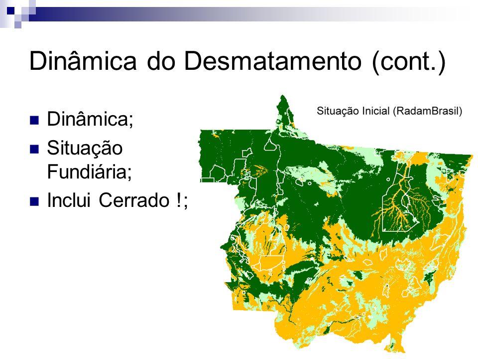 Dinâmica do Desmatamento (cont.)