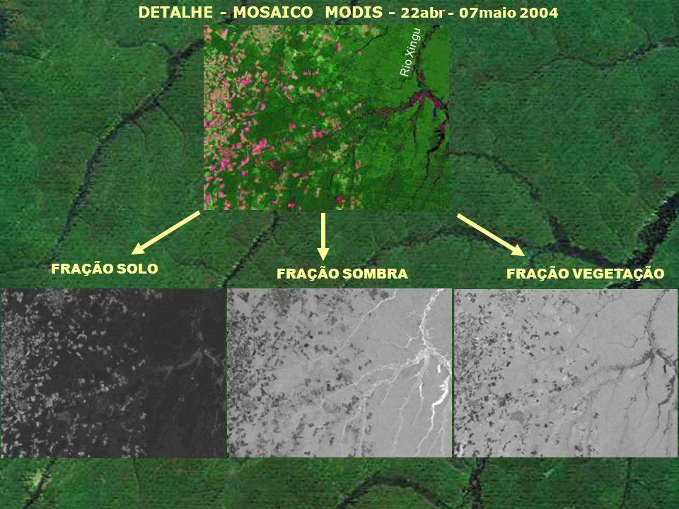 FRAÇÃO SOLO DETALHE - MOSAICO MODIS - 22abr - 07maio 2004