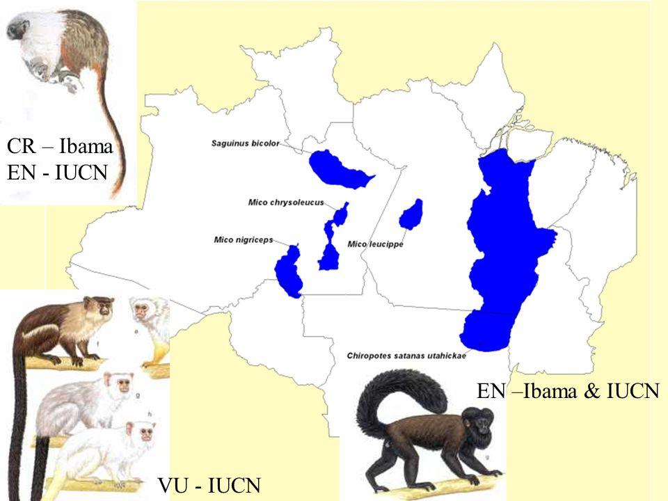 CR – Ibama EN - IUCN EN –Ibama & IUCN VU - IUCN