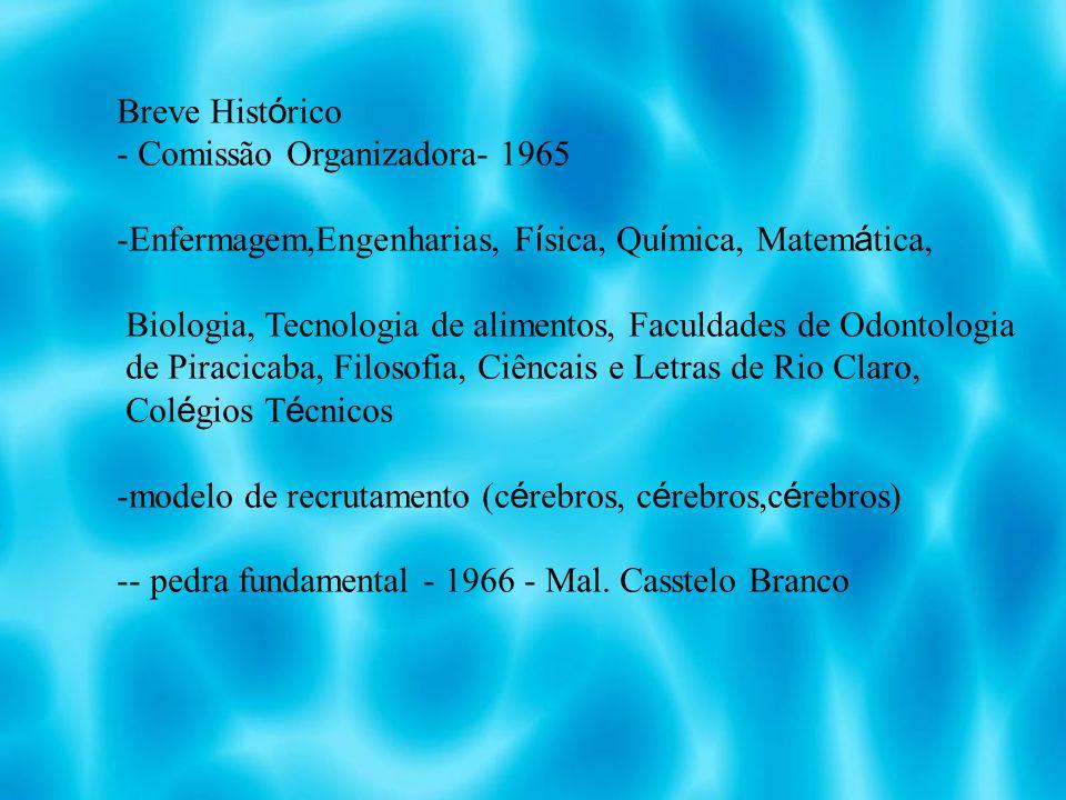 Breve Histórico Comissão Organizadora- 1965. Enfermagem,Engenharias, Física, Química, Matemática,