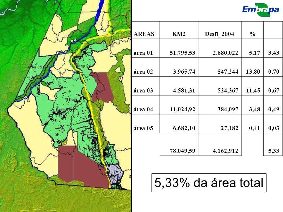 5,33% da área total AREAS KM2 Desfl_2004 % área 01 51.795,53 2.680,022