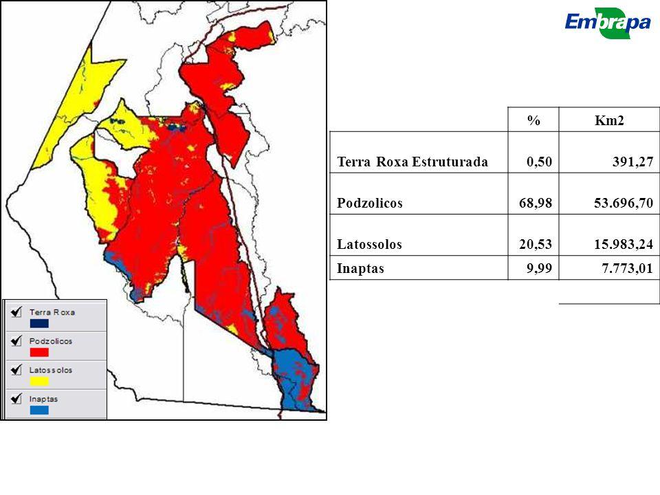 % Km2. Terra Roxa Estruturada. 0,50. 391,27. Podzolicos. 68,98. 53.696,70. Latossolos. 20,53.