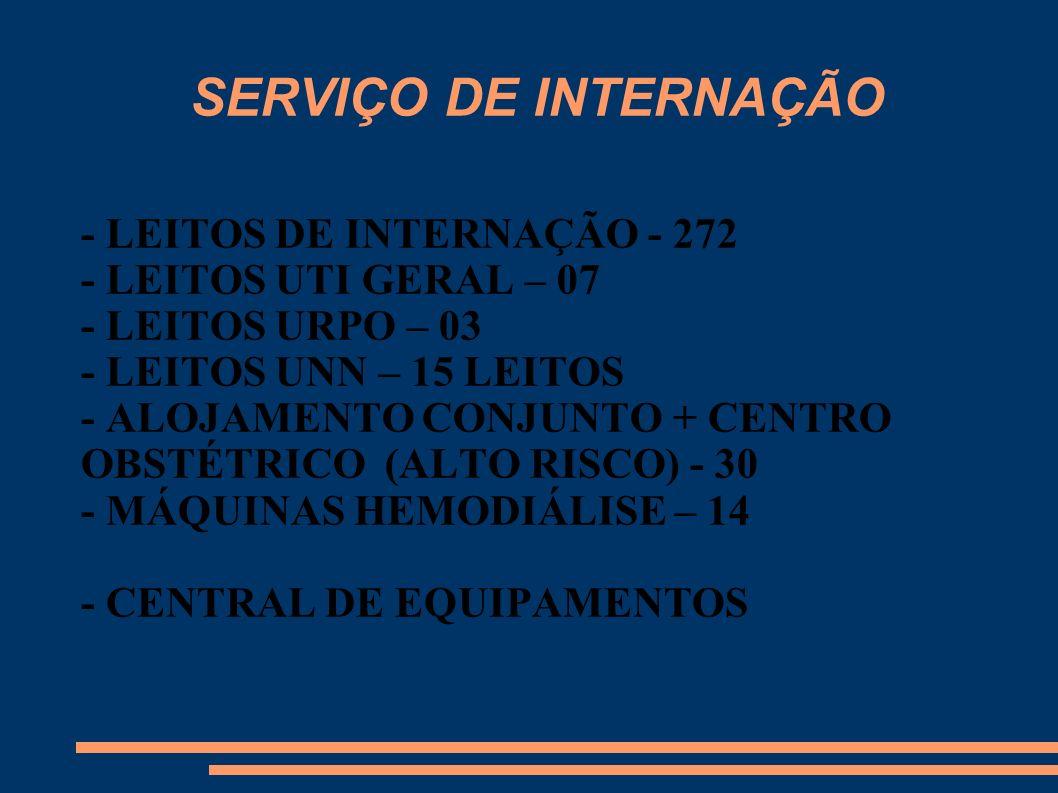 SERVIÇO DE INTERNAÇÃO - LEITOS DE INTERNAÇÃO - 272