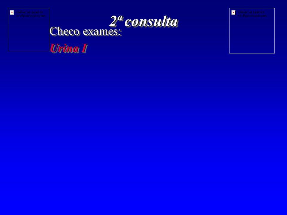 2ª consulta Checo exames: Urina I