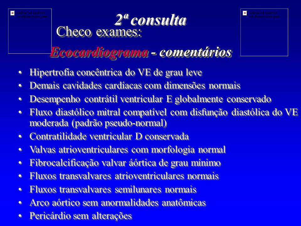 2ª consulta Checo exames: Ecocardiograma - comentários