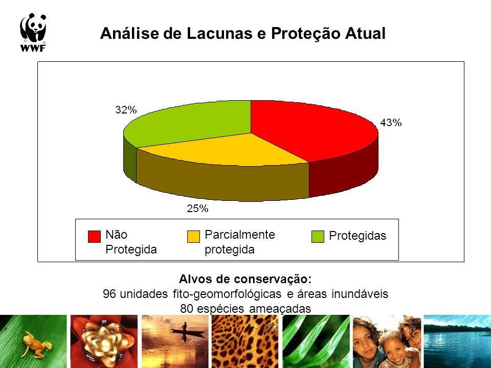 Análise de Lacunas e Proteção Atual