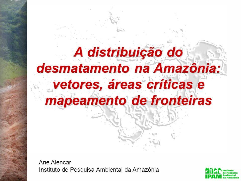 A distribuição do desmatamento na Amazônia: vetores, áreas críticas e mapeamento de fronteiras