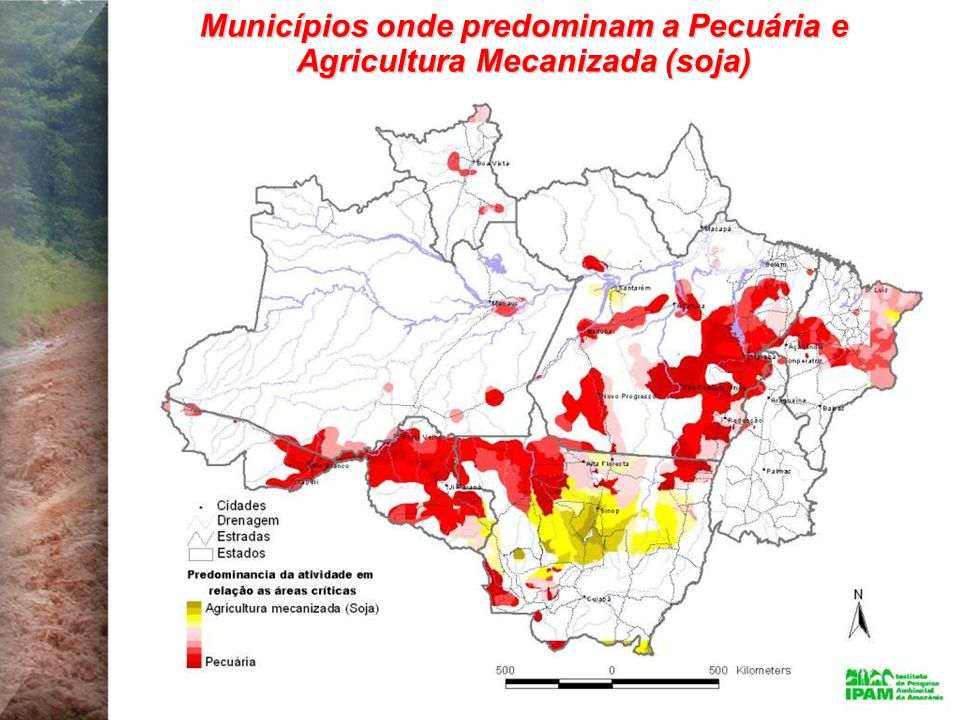 Municípios onde predominam a Pecuária e Agricultura Mecanizada (soja)