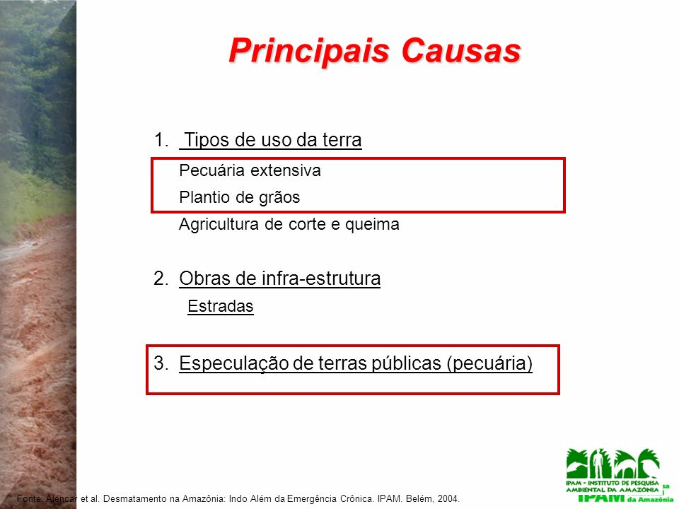Principais Causas Tipos de uso da terra Pecuária extensiva