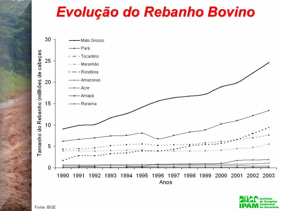 Evolução do Rebanho Bovino