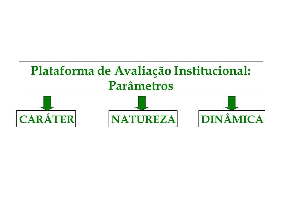 Plataforma de Avaliação Institucional: Parâmetros