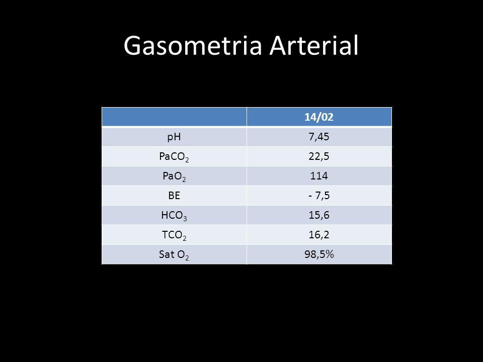 Gasometria Arterial 14/02 pH 7,45 PaCO2 22,5 PaO2 114 BE - 7,5 HCO3