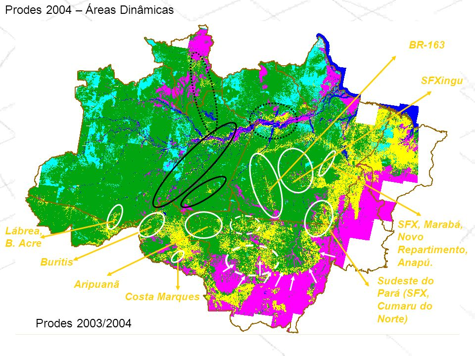 Prodes 2004 – Áreas Dinâmicas