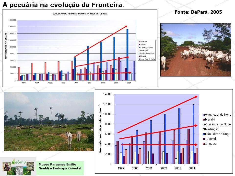 A pecuária na evolução da Fronteira.