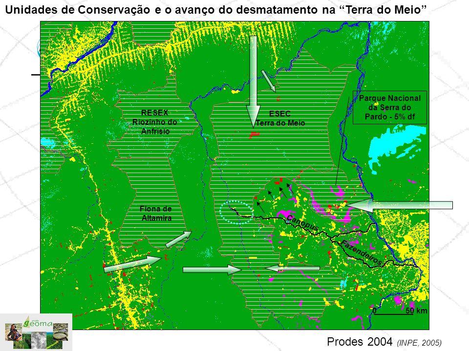 Unidades de Conservação e o avanço do desmatamento na Terra do Meio
