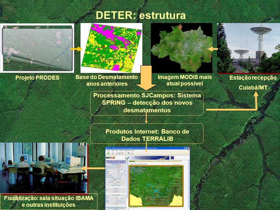 Base do Desmatamento anos anteriores Imagem MODIS mais atual possível