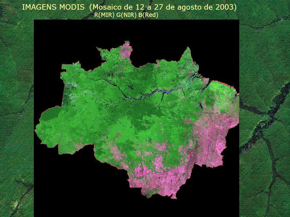 IMAGENS MODIS (Mosaico de 12 a 27 de agosto de 2003)