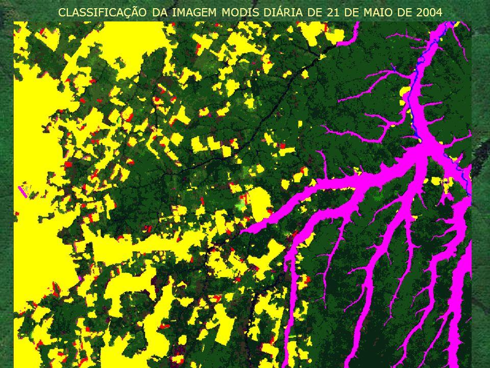 CLASSIFICAÇÃO DA IMAGEM MODIS DIÁRIA DE 21 DE MAIO DE 2004