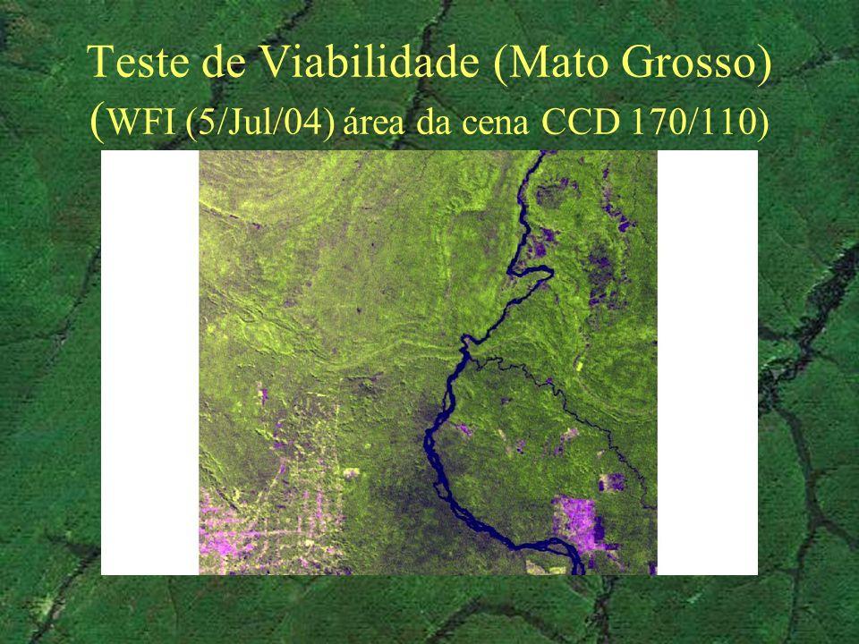 Teste de Viabilidade (Mato Grosso) (WFI (5/Jul/04) área da cena CCD 170/110)