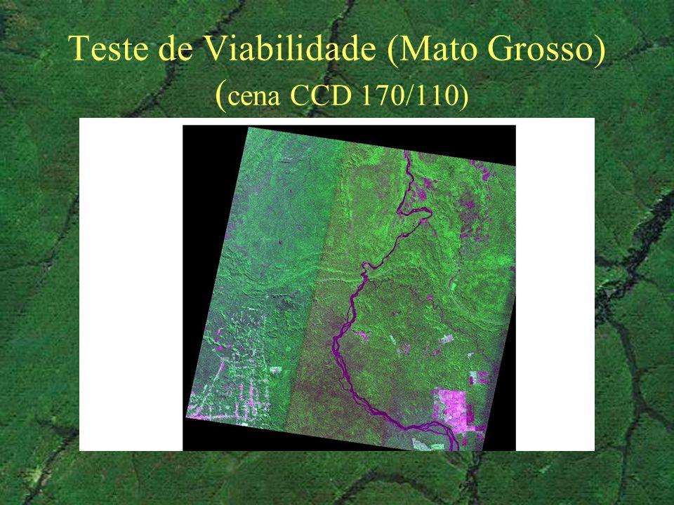 Teste de Viabilidade (Mato Grosso) (cena CCD 170/110)