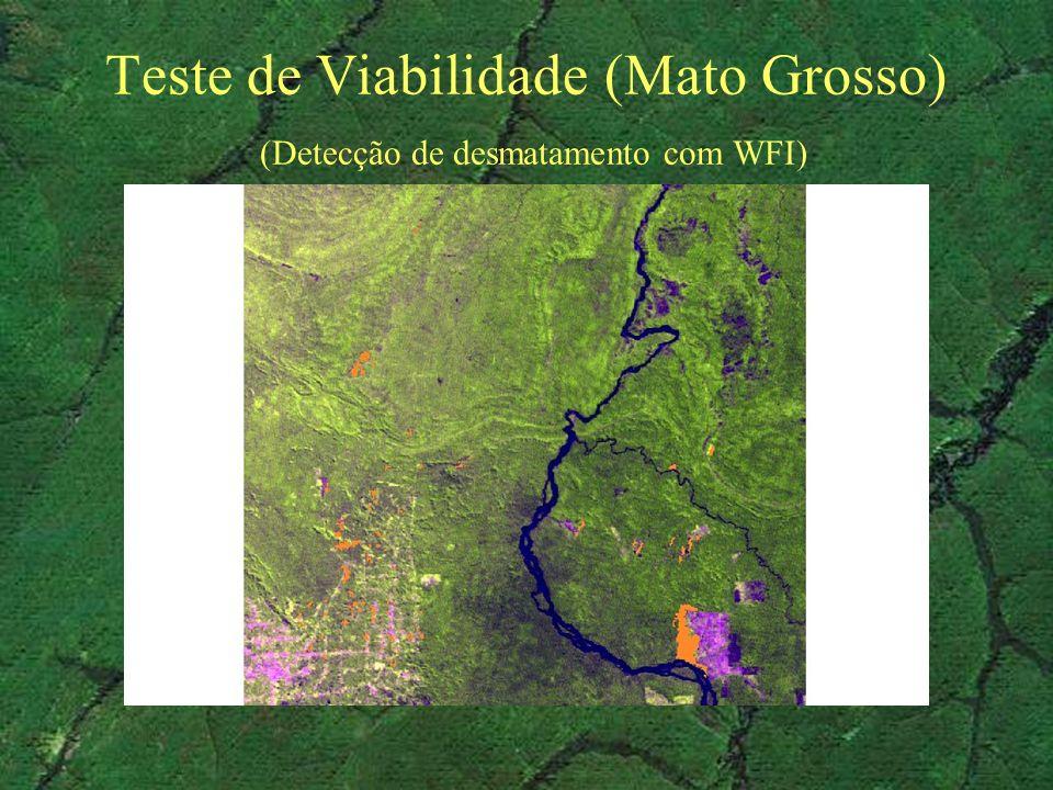 Teste de Viabilidade (Mato Grosso) (Detecção de desmatamento com WFI)