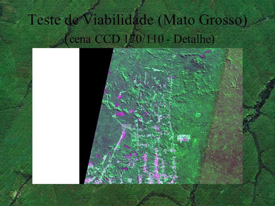 Teste de Viabilidade (Mato Grosso) (cena CCD 170/110 - Detalhe)
