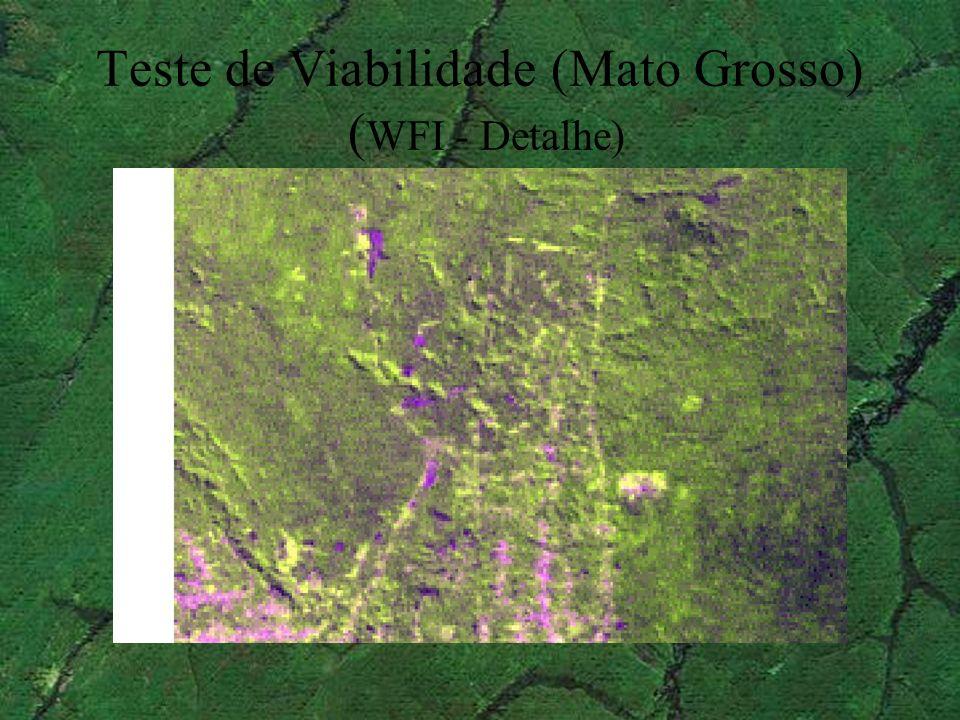 Teste de Viabilidade (Mato Grosso) (WFI - Detalhe)