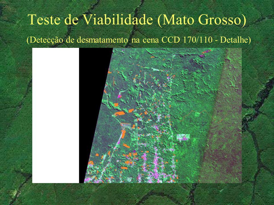 Teste de Viabilidade (Mato Grosso) (Detecção de desmatamento na cena CCD 170/110 - Detalhe)