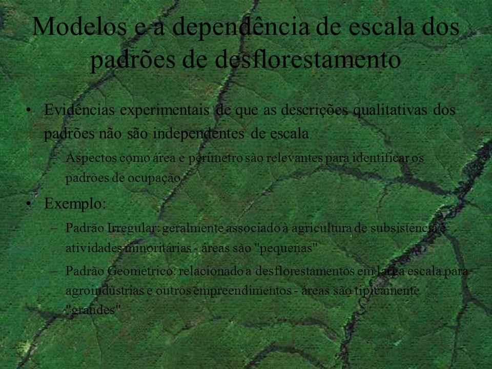 Modelos e a dependência de escala dos padrões de desflorestamento