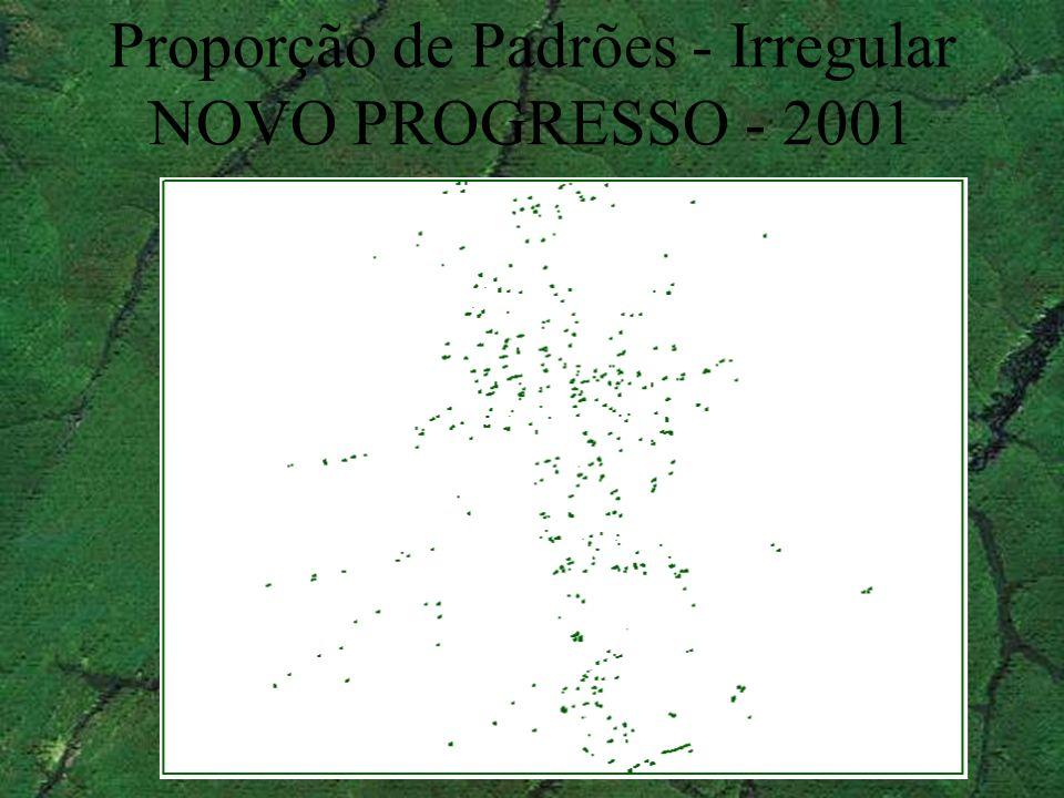 Proporção de Padrões - Irregular NOVO PROGRESSO - 2001