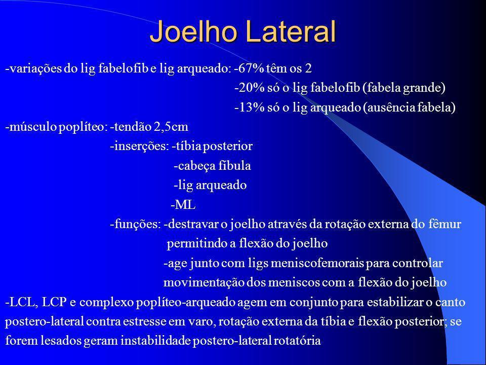 Joelho Lateral-variações do lig fabelofib e lig arqueado: -67% têm os 2. -20% só o lig fabelofib (fabela grande)