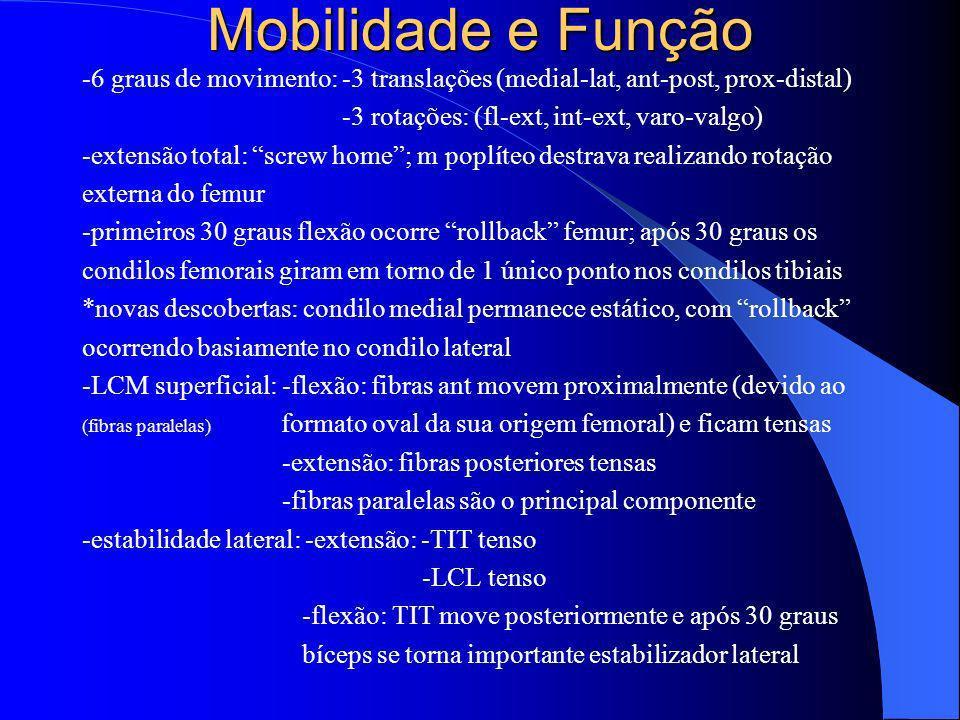 Mobilidade e Função -6 graus de movimento: -3 translações (medial-lat, ant-post, prox-distal) -3 rotações: (fl-ext, int-ext, varo-valgo)