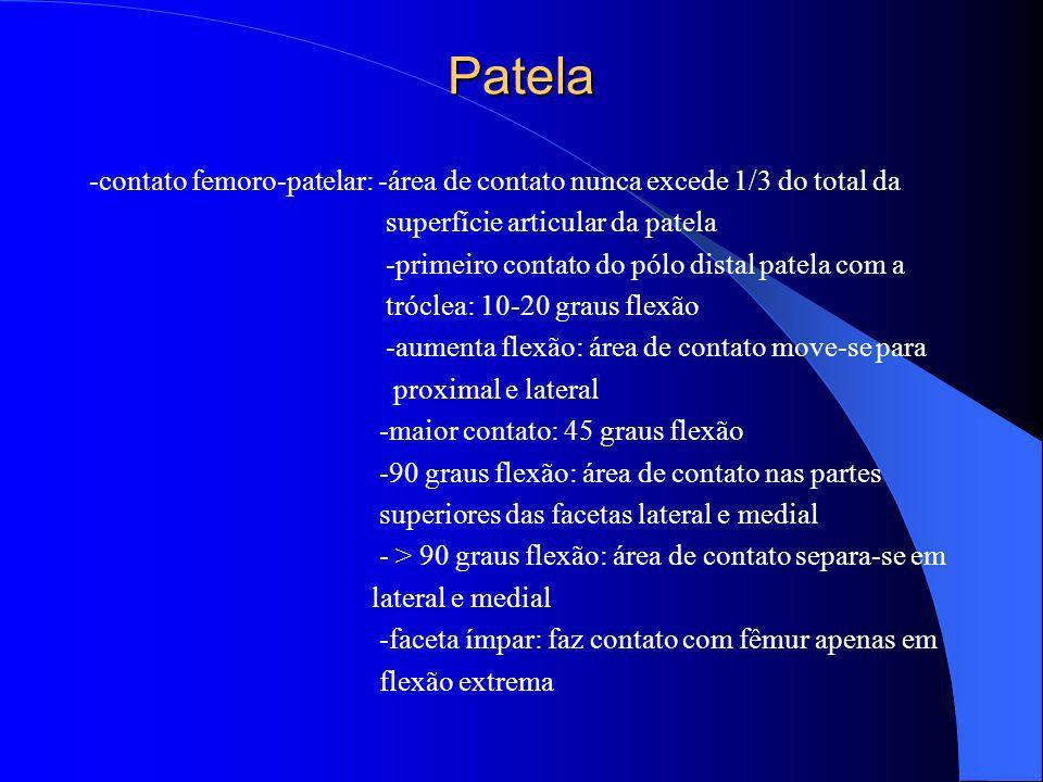 Patela-contato femoro-patelar: -área de contato nunca excede 1/3 do total da. superfície articular da patela.