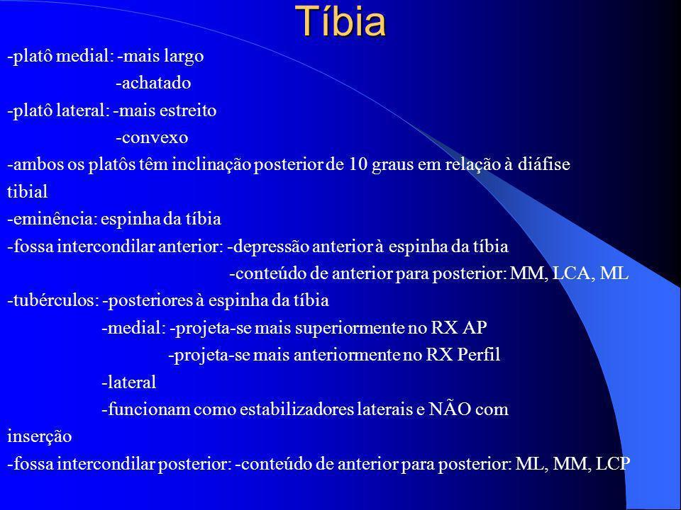 Tíbia -platô medial: -mais largo -achatado