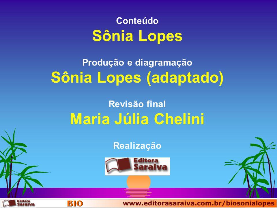 Produção e diagramação Sônia Lopes (adaptado)
