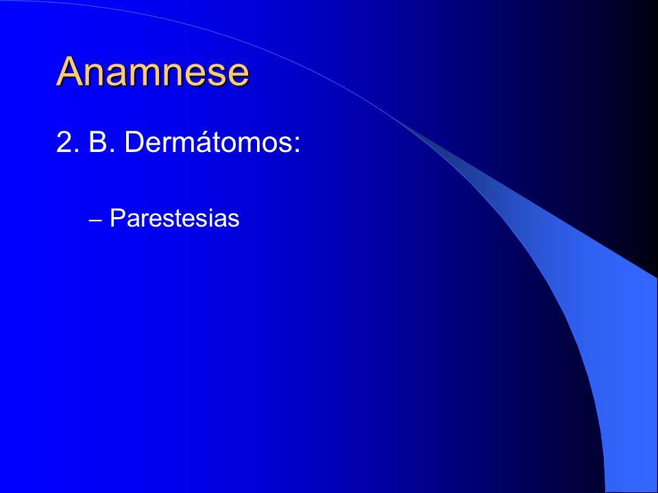 Anamnese 2. B. Dermátomos: Parestesias