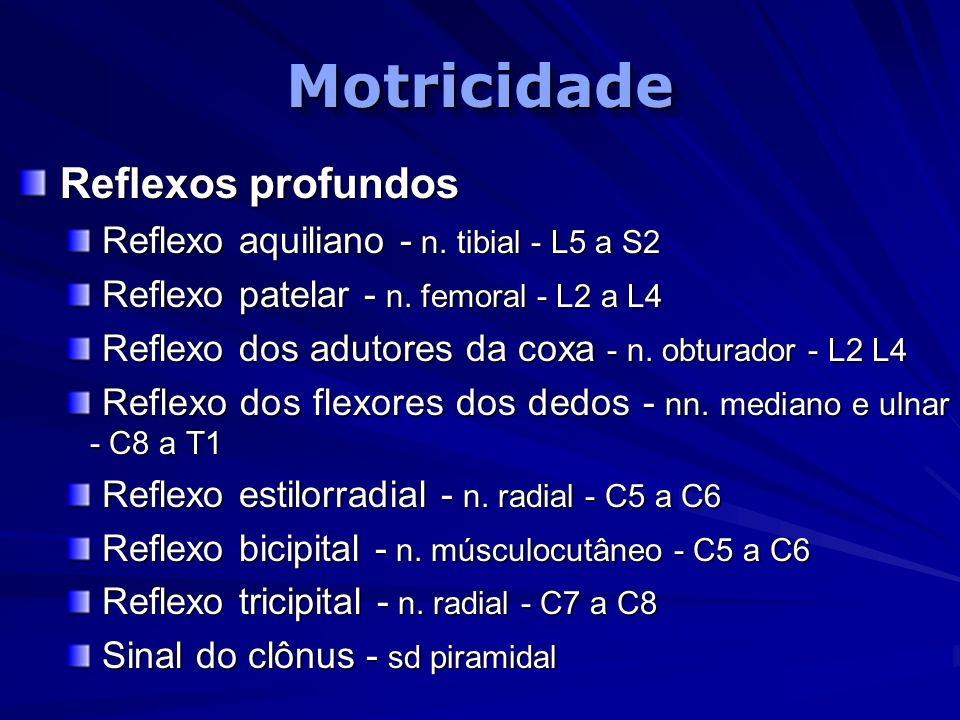 Motricidade Reflexos profundos Reflexo aquiliano - n. tibial - L5 a S2