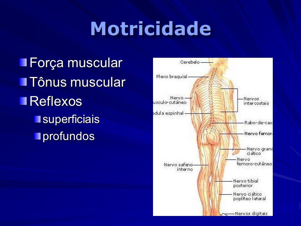 Motricidade Força muscular Tônus muscular Reflexos superficiais