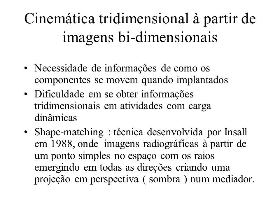 Cinemática tridimensional à partir de imagens bi-dimensionais