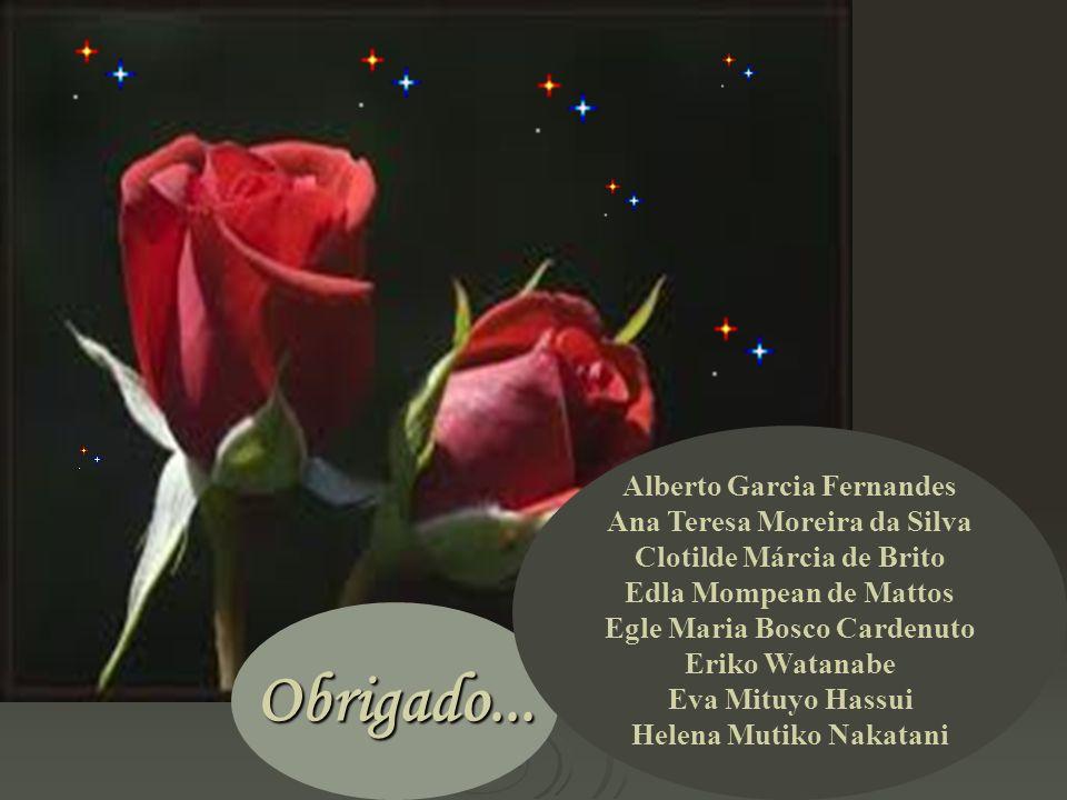 Obrigado... Alberto Garcia Fernandes Ana Teresa Moreira da Silva