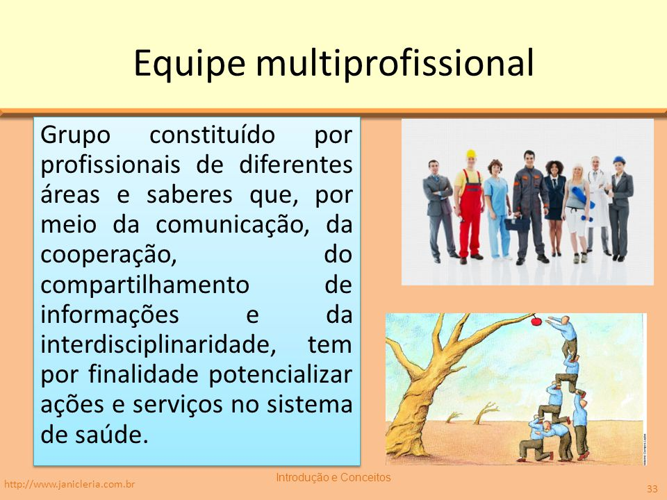 Equipe multiprofissional